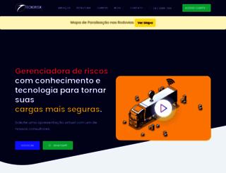 tecnorisk.com.br screenshot