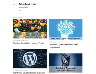teknobeyin.blogspot.com.tr screenshot