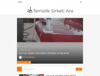 temizliksirketiara.com screenshot