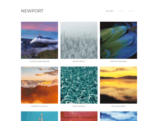 template-newport.webflow.io screenshot