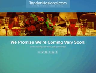tendernasional.com screenshot
