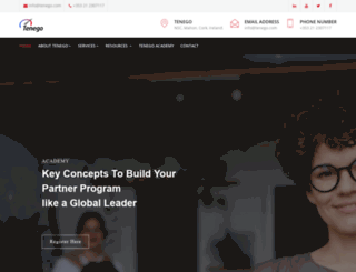 tenegopartnering.com screenshot