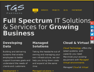 tgspartners.com screenshot