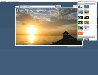 the-page.net screenshot