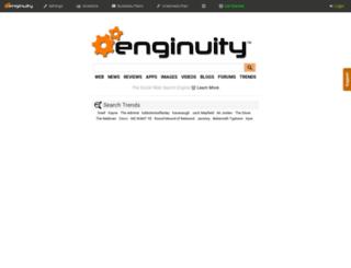 theenginuity.com screenshot