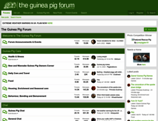 theguineapigforum.co.uk screenshot