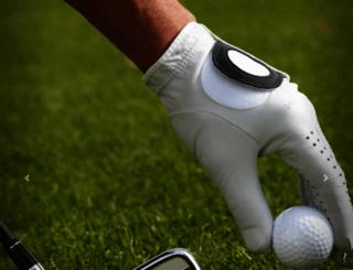 theindianjourney.com screenshot