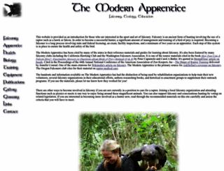 themodernapprentice.com screenshot
