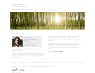 therapynorthlondon.co.uk screenshot