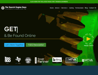 thesearchengineguys.com screenshot