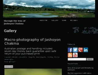 throughthelensjashoyonchakma.com screenshot