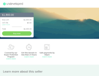 tiica.com screenshot