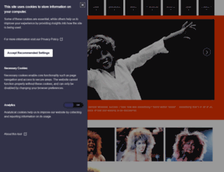 tina-turner.nl screenshot