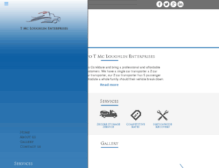 tmcloughlinenterprises.ie screenshot
