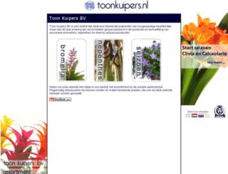 toonkuipers.nl screenshot