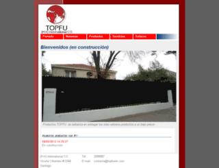 topfuwin.com screenshot