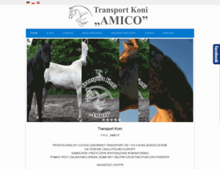transportkoni-amico.pl screenshot