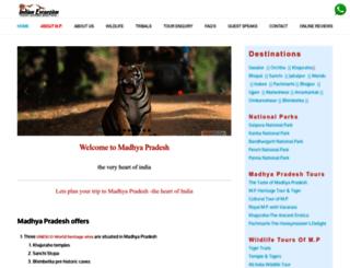 travelcentralindia.com screenshot