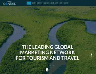 travelconsul.com screenshot