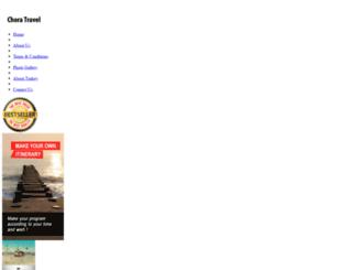travelerturkey.com screenshot