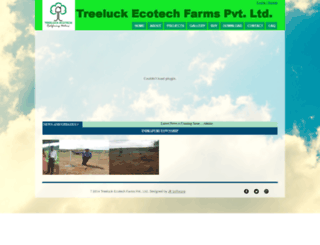 treeluckgroup.com screenshot