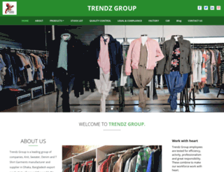 trendzgroup.com screenshot