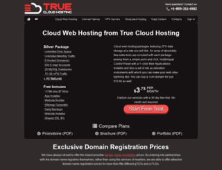 true-cloud-hosting.com screenshot