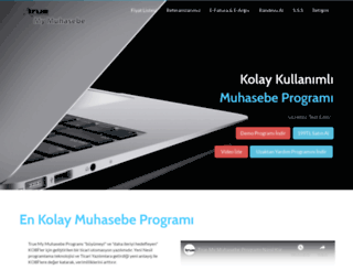 truemuhasebe.com screenshot