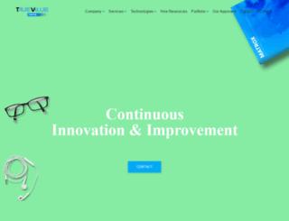 truevalueinfosoft.com screenshot