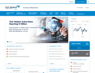 ttinvestorrelations.com screenshot