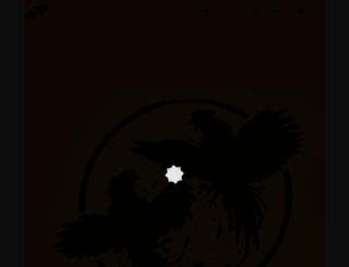 turnpiketroubadours.com screenshot