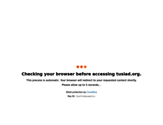 tusiad.org screenshot