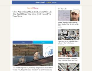 two-owls.socialchive.com screenshot