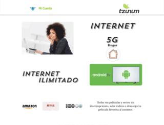tzunum.mx screenshot