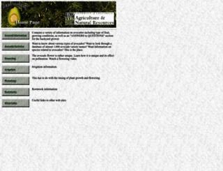 ucavo.ucr.edu screenshot