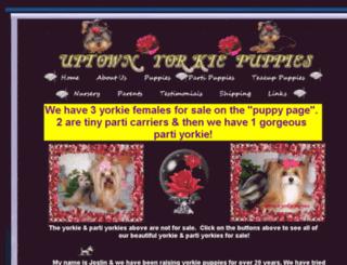 uptownyorkiepuppies.com screenshot