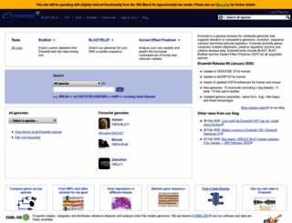 useast.ensembl.org screenshot