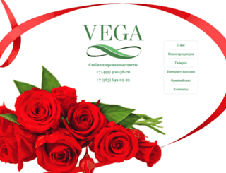 vg-flowers.ru screenshot