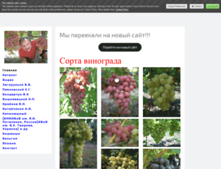 vinogradkorolia.jimdo.com screenshot