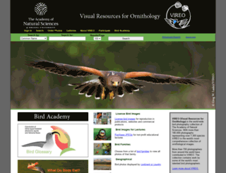 vireo.ansp.org screenshot