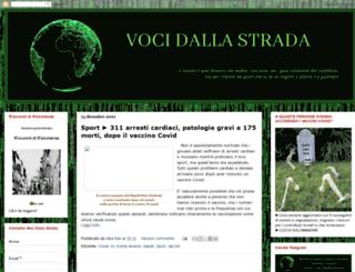 vocidallastrada.blogspot.it screenshot