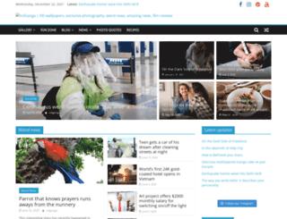 volganga.com screenshot