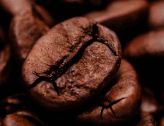 watchescanada2ca.coffeetarian.com screenshot