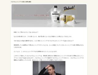 websitedesigndelhi.biz screenshot