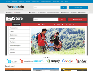 websiteskin.com screenshot