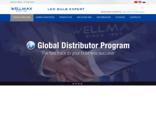 wellmaxgroup.es screenshot