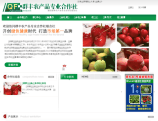wfqunfeng.com screenshot
