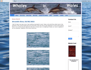 whaleswales.blogspot.com screenshot