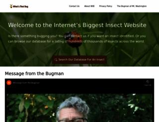 whatsthatbug.com screenshot