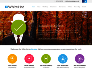 white-hat-web-design.co.uk screenshot